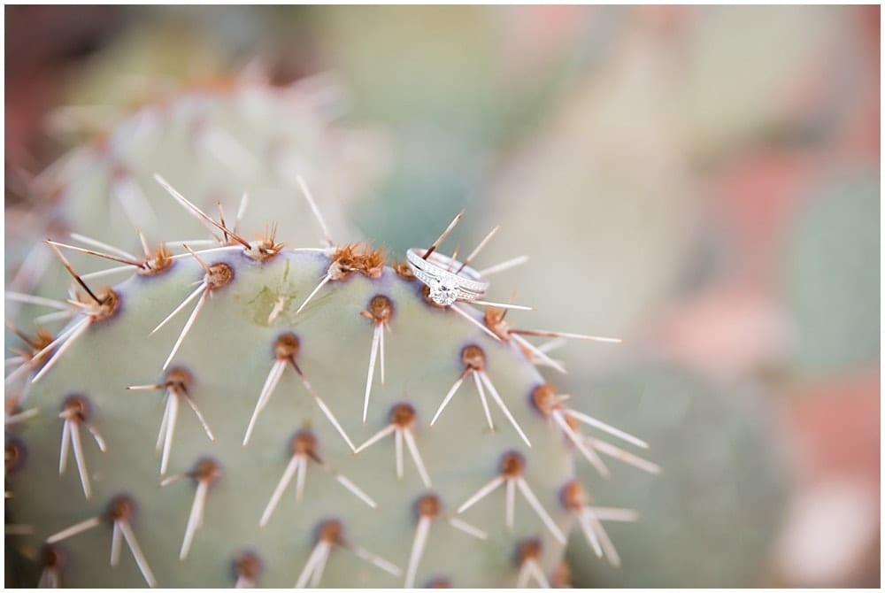 Wedding ring posed beautifully on a cactus for a photo of the wedding details.