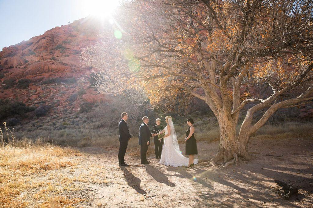 Eloping in Vegas - Red Rock Canyon