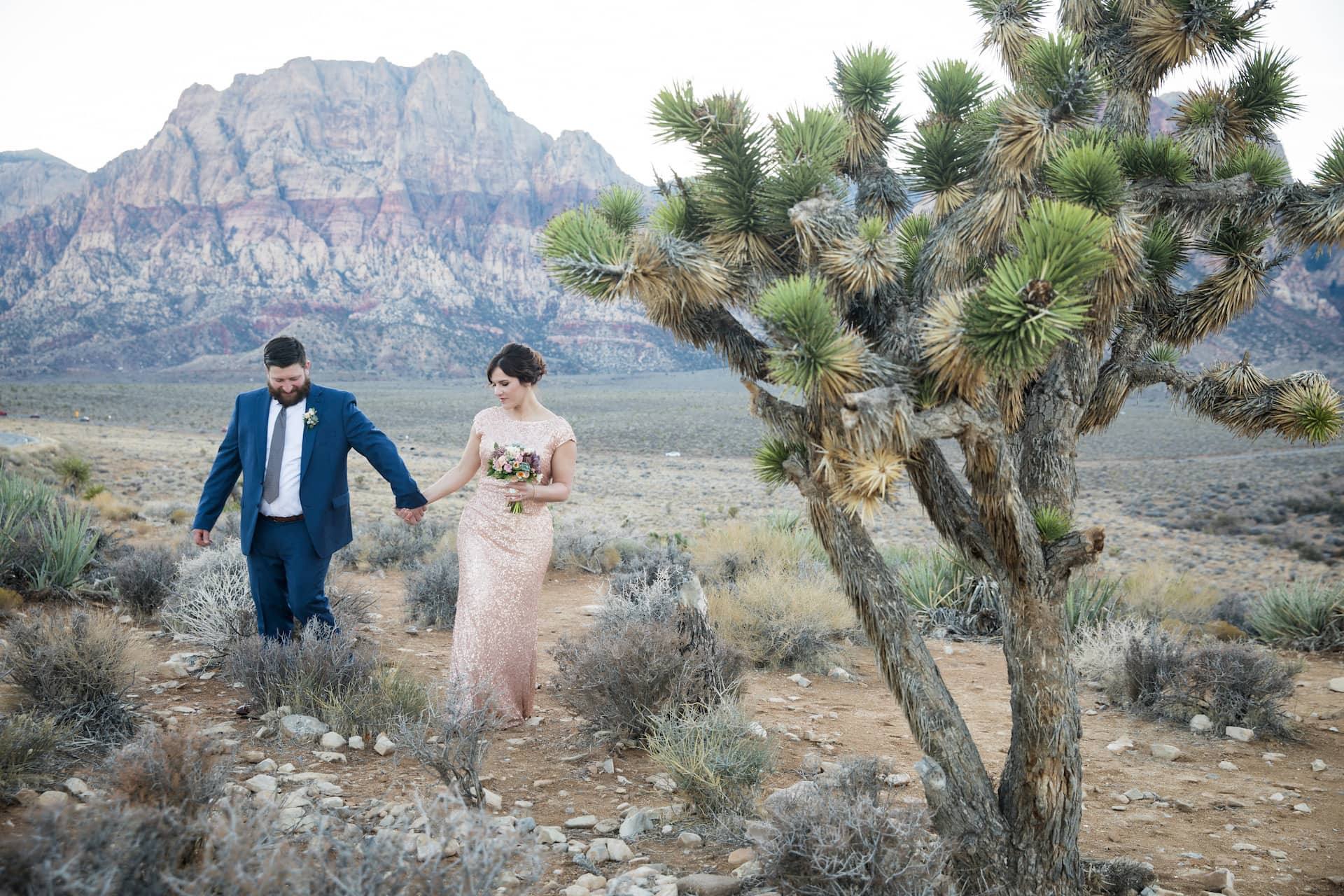 Beth + Derek eloping in the desert in Las Vegas.