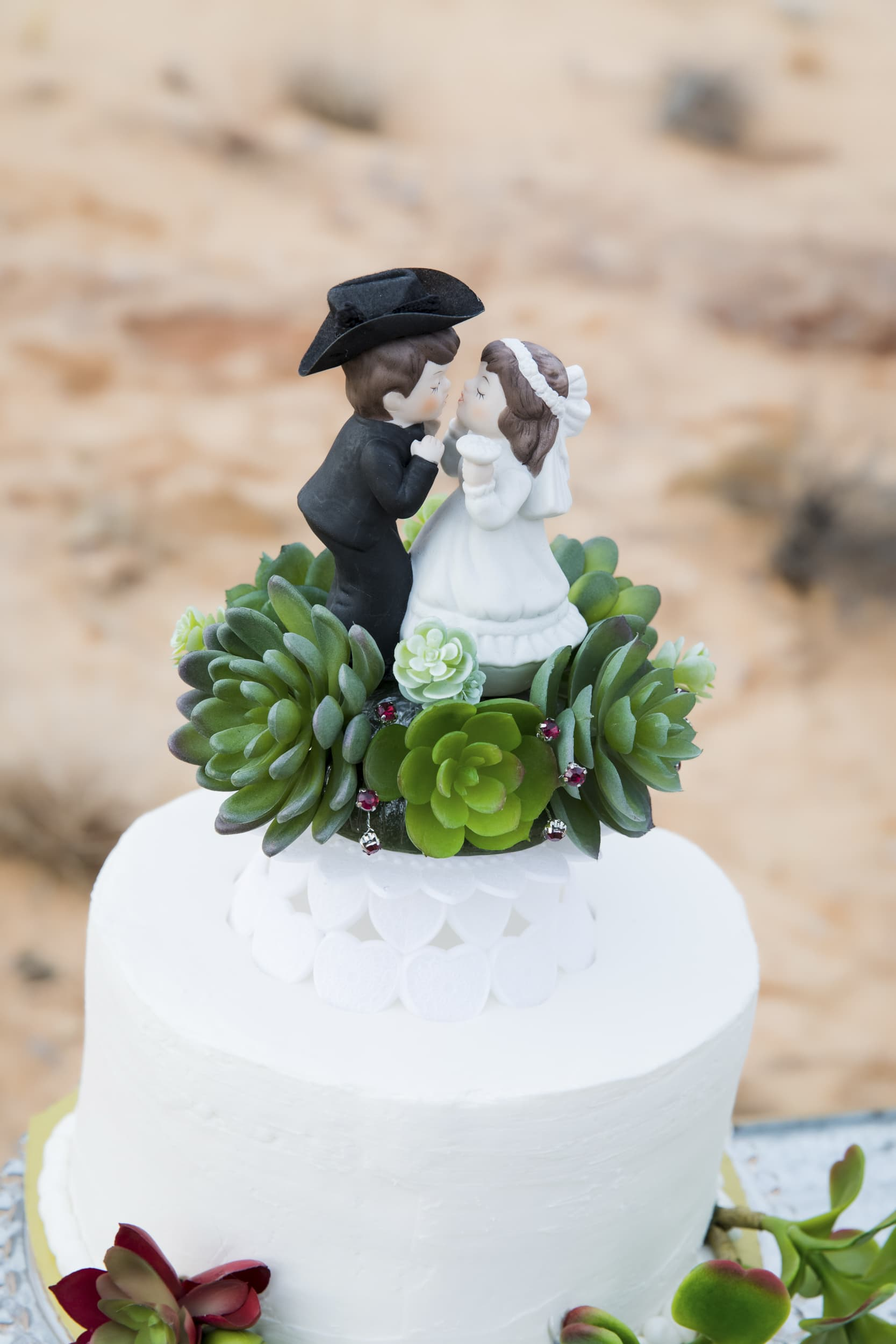 Cake topper with succulents.