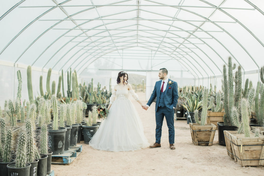 Bride and groom hand in hand in cactus nursery