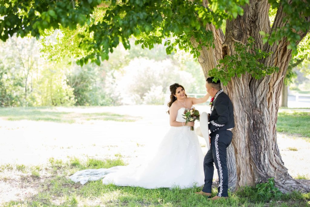 Bride and groom stand near a tree with wide open grassy area behind them.